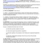 Free Software Development NonDisclosure Agreement NDA PDF - Nda template software development